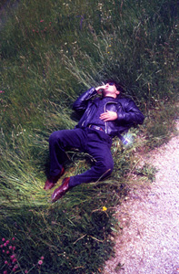 lunatic-on-the-grass1.jpg