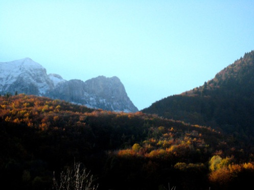 snow-and-leaves.jpg