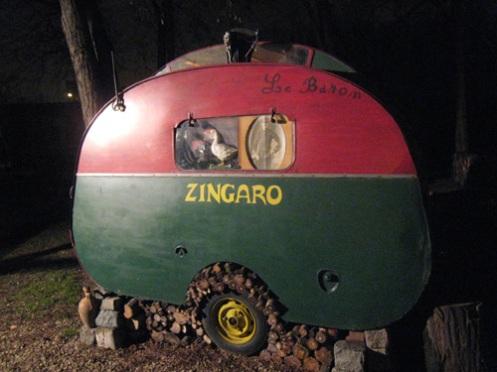zingaro1.jpg