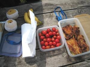 Nournours' picnic
