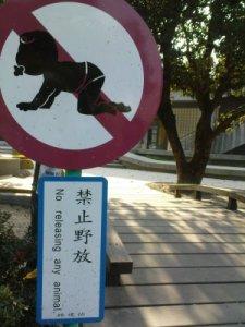 taiwanbabyprohibition